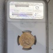 1881 Gold Coin Back